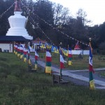 I stayed in the campervan and walked past the prayer flags and the stupa every morning to go to classes in the temple.